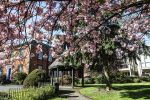 Knutsford Council Offices in Spring